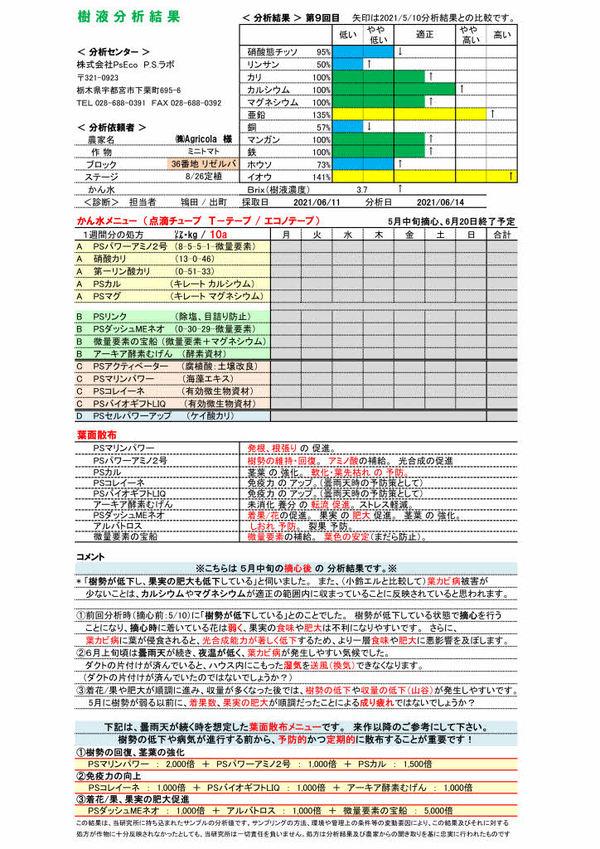 樹液分析(20-21年 最終)